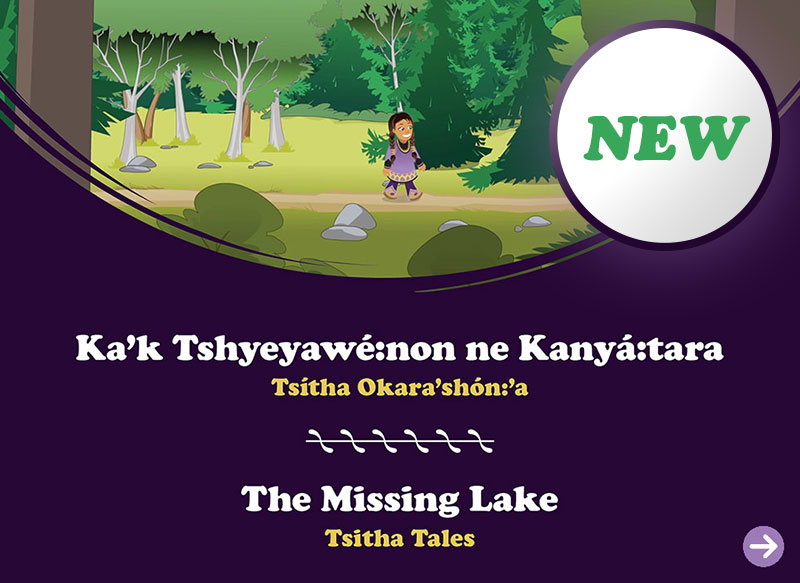 The Missing Lake book cover